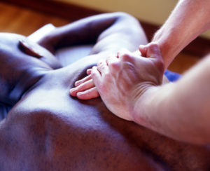 Sports Massage Picture with Hands on Back