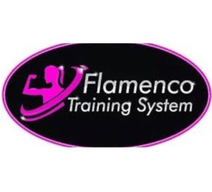 Flamenco Training System