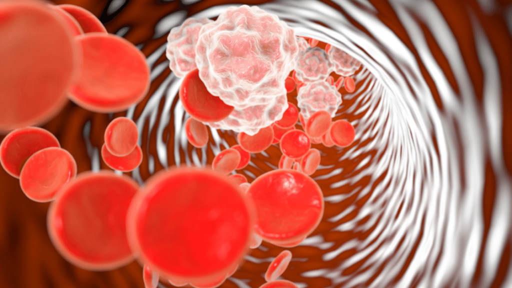 blood cells running through vessels as massage increase circulation